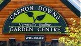 Carnondowns