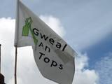 Gwealantops